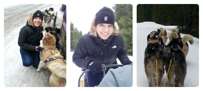 Dunja mushing collage