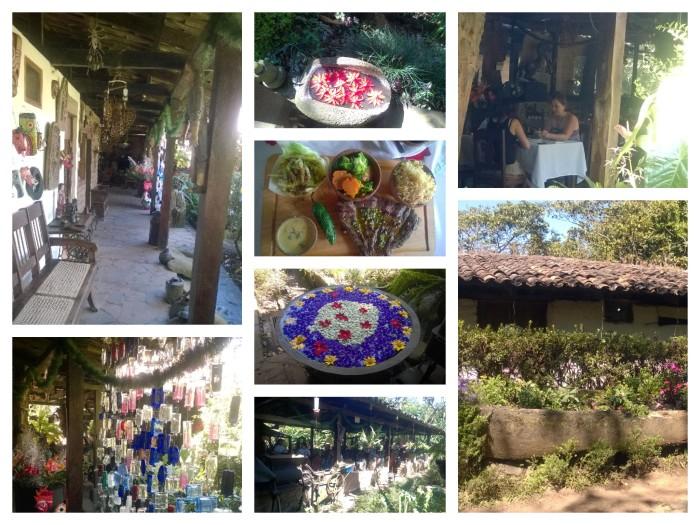 Jardin de Celeste